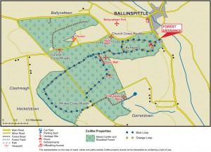 Ballinspittle - Garrettstown Woods