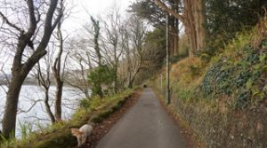 scilly-walk-kinsale-3
