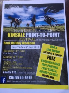 2016 Kinsale Point to Point Festival