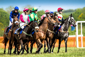 Kinsale-Point-to-Point